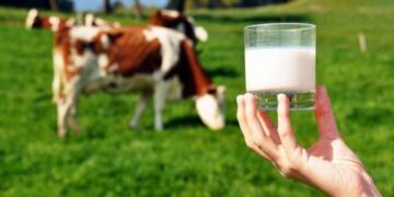 """Sağlık Bakanlığı,Her gün Süt Tüketin""""Sokak Sütü"""" Almayın!"""
